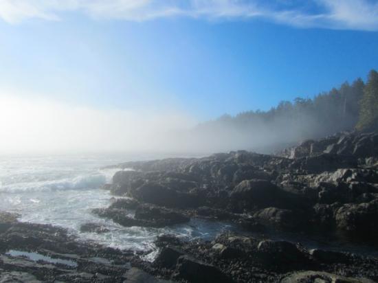 Coastline of the Juan de Fuca Marine Trail