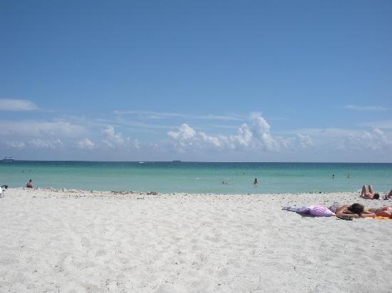 South Beach Along Lummus Park Picture Of Miami