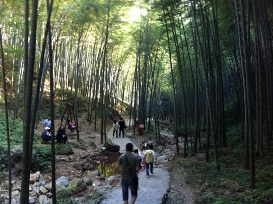 Yixing Zhuhai : Abstieg vom Gipfel