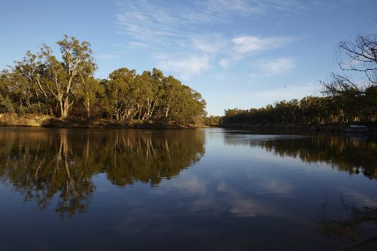Murray River From Our Banks Picture Of Winbi River Resort Moama
