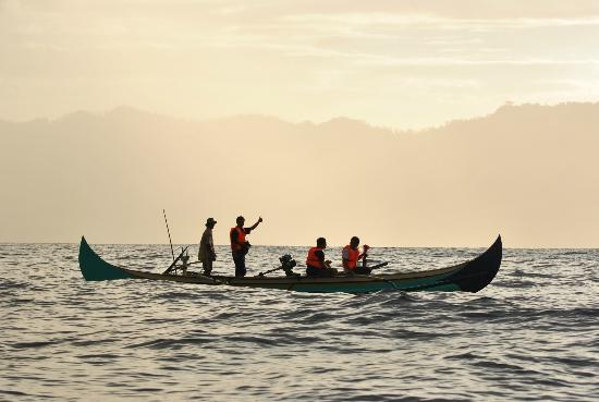 Teluk Kiluan: Morning Dolphin tour at Kiluan Bay