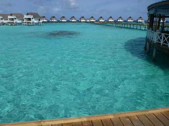 Centara Grand Island Resort & Spa Maldives: Amazing blue water