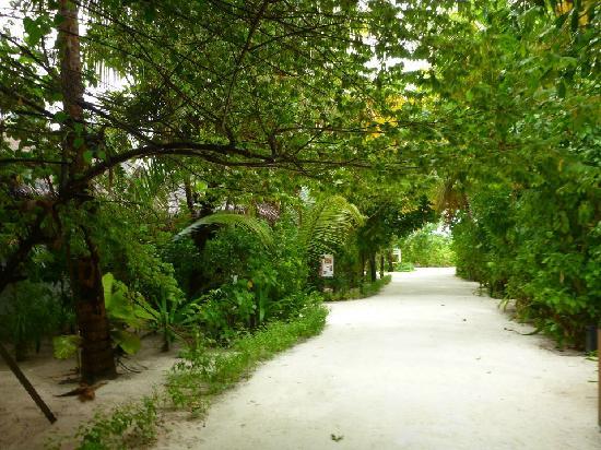 Centara Grand Island Resort & Spa Maldives: Just strolling around the island