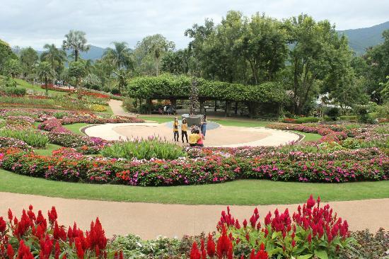 Mae Fah Luang Garden: garden