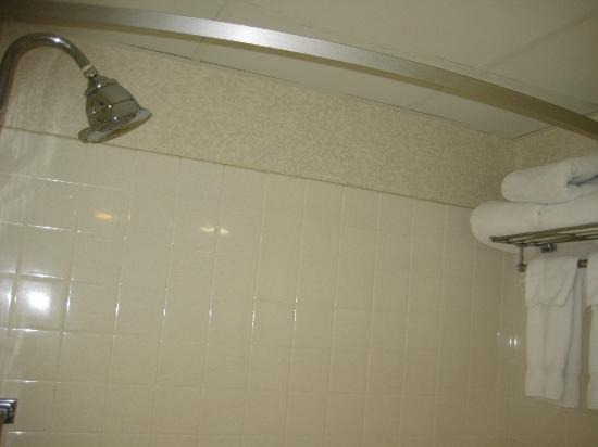 Holiday Inn - Airport Conference Center : shower