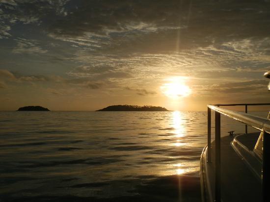 Phuket Sailing Adventures : sailing back in a beautiful sunset