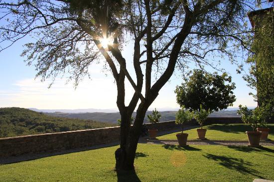 Agriturismo Sant'Anna in Camprena: tramonto dal giardino