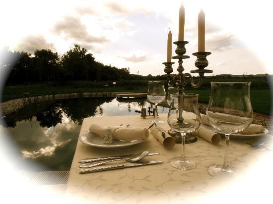 Villa Fiore : BIO swimming lake in the background.