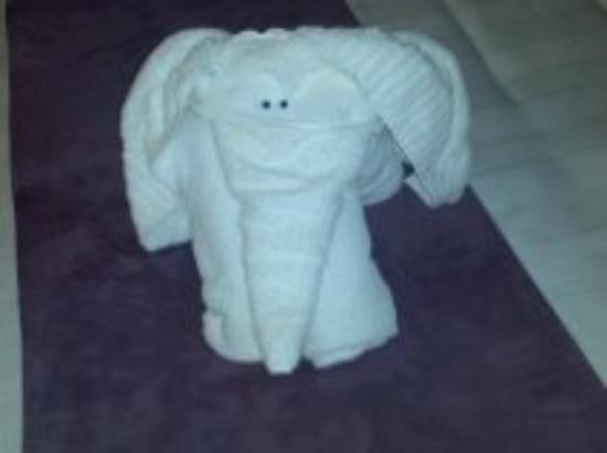 Premier Inn Leicester North West Hotel: the towel elephant