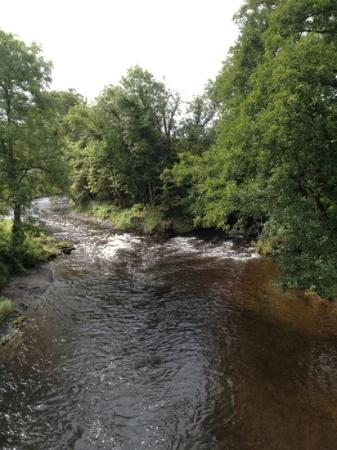 The Cammarch Hotel: The River Irfon from the Road Bridge