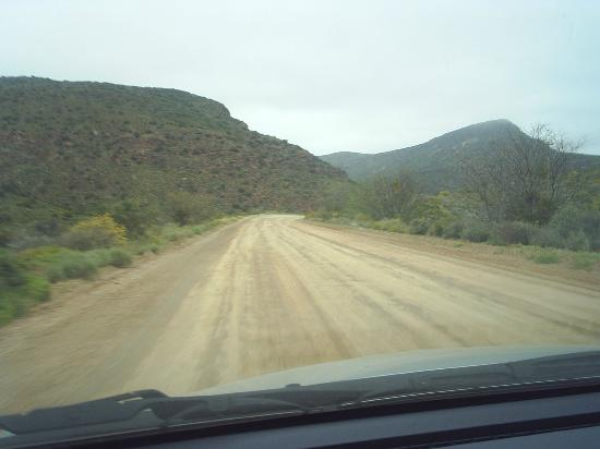 Drive to African Game Lodge