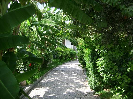 Oasis Hotel Bungalows Rhodes: grounds