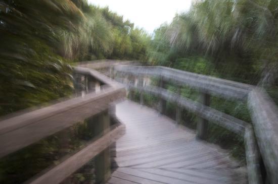 ذا كاريبيان كورت بوتيك هوتل: Walkway to the beach.