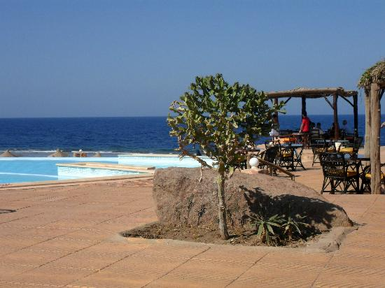 Kahramana Beach Resort: piscina ristorante