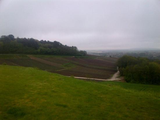 Domaine des Grattieres: The view!