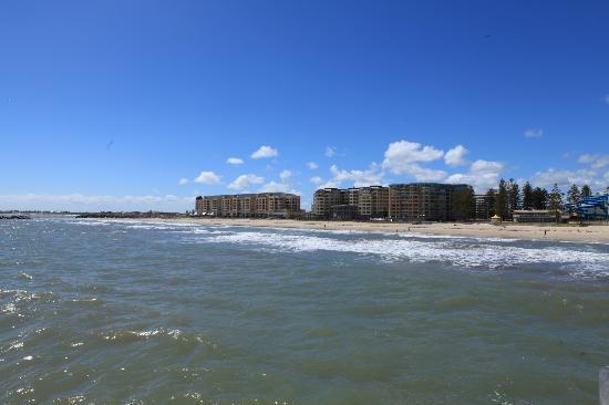 Glenelg Surf Life Saving Club : Enjoy the atmosphere