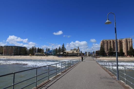 Glenelg Surf Life Saving Club : Sandy beaches to enjoy