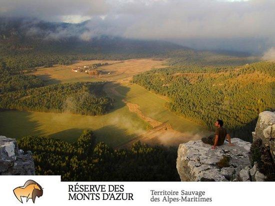 ecolodges picture of reserve biologique des monts d azur thorenc tripadvisor