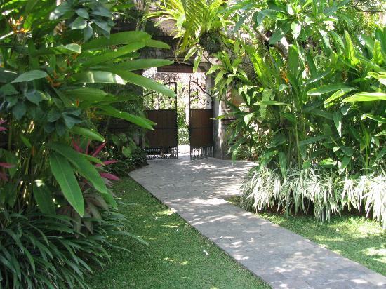 Kayu Sugih Guest House : garden view