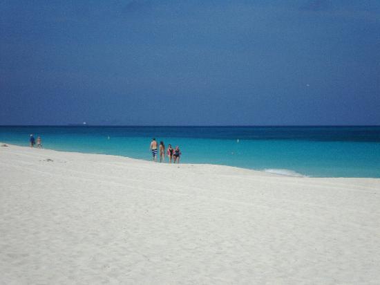 Eagle Beach just across the Oceania 3