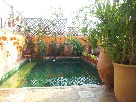 Riad CharCam: The pool