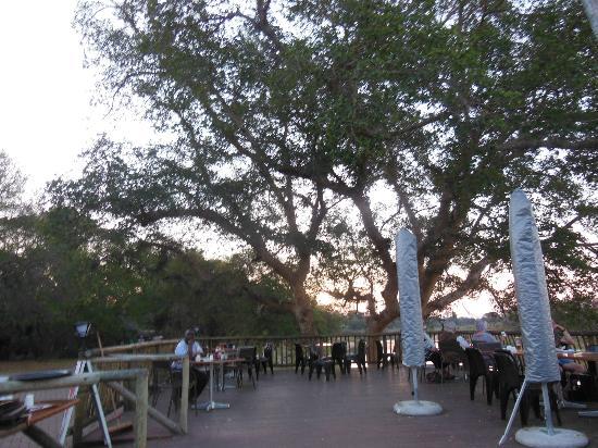 Skukuza Rest Camp: vista dalla terrazza del bar
