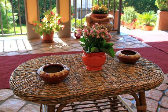 Villa Rosita: Terrace