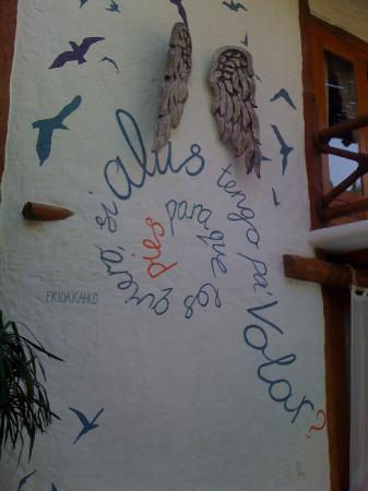 Holbox Hotel Casa las Tortugas - Petit Beach Hotel & Spa: dettagli