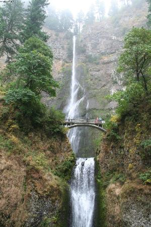 Columbia River Gorge: Multnomah falls