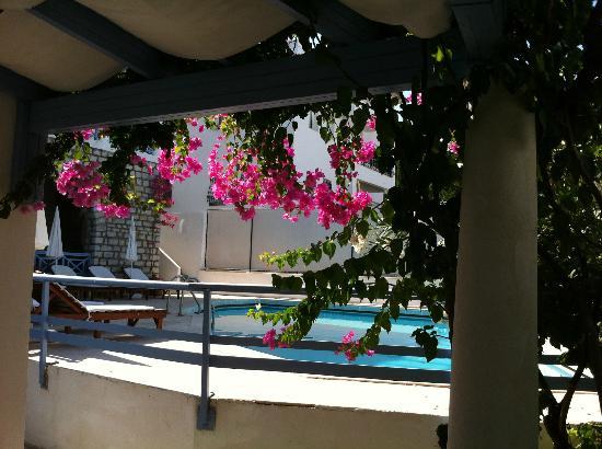 Beyaz Hotel: breakfast area under canopy