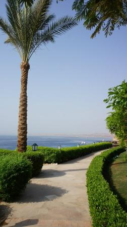 Jaz Fanara Resort & Residence: вид на море