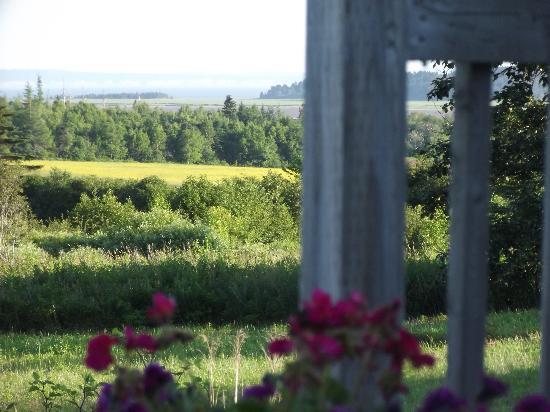 Chimera Farms Bed and Breakfast: View from Chalet deck
