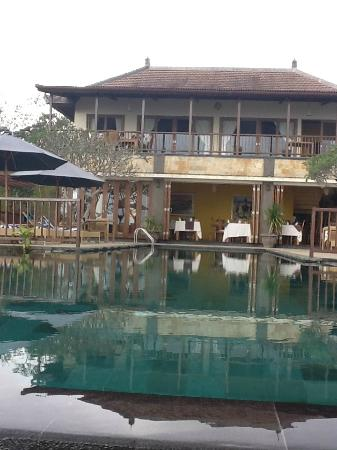 Munduk Moding Plantation : Pool view