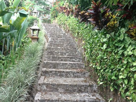 Munduk Moding Plantation: Steps down to our villa