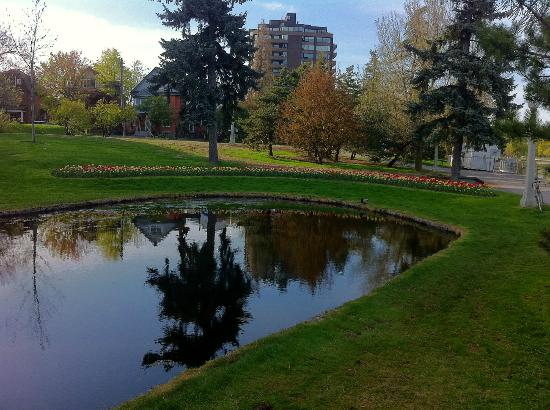 Rideau Canal: Pond beside the Canal in the Glebe (3rd Av)