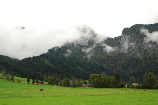 Bauernhof Schoerghof: The view from the balcony