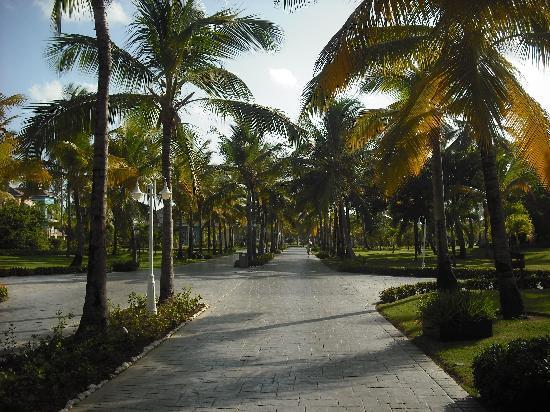 Ocean Blue & Sand: Beautiful Peaceful Walk To Lobby!