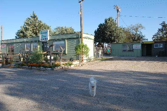 Olancha RV Park and Motel: pet friendly establishment