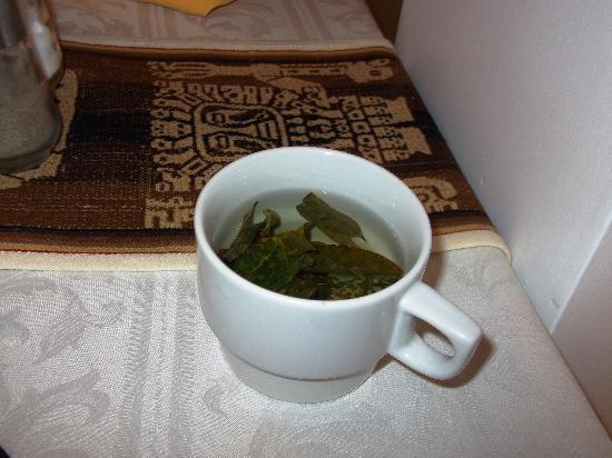 Del Prado Inn: chá de folhas de coca à vontade no hotel