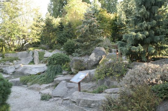 Bellevue Botanical Garden: the gardens