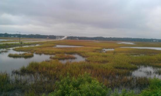 The Sunset Inn: View of Salt Marsh from back porch of Old Baldy