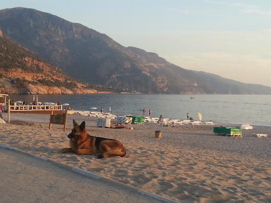 Oludeniz: The Beach