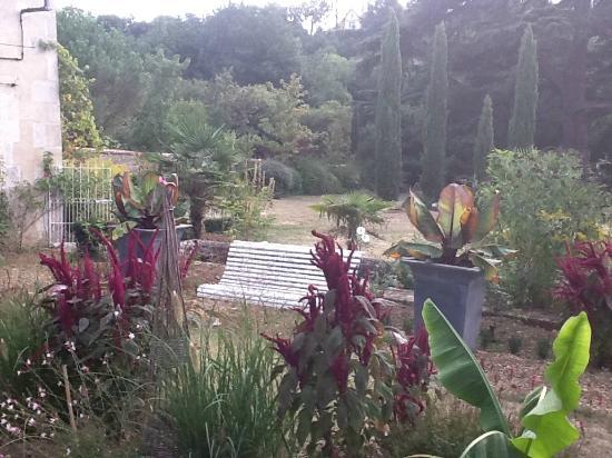 Les Cours du Clain: Beautiful gardens