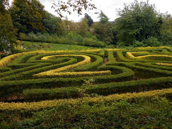 Painswick Rococo Garden: The Maze
