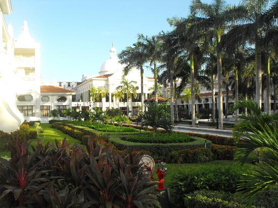 Hotel Riu Palace Riviera Maya: gardens