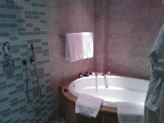 Park Hyatt Istanbul - Macka Palas: Bathroom