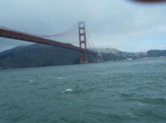 San Francisco Sailing Company: The Golden Gate!
