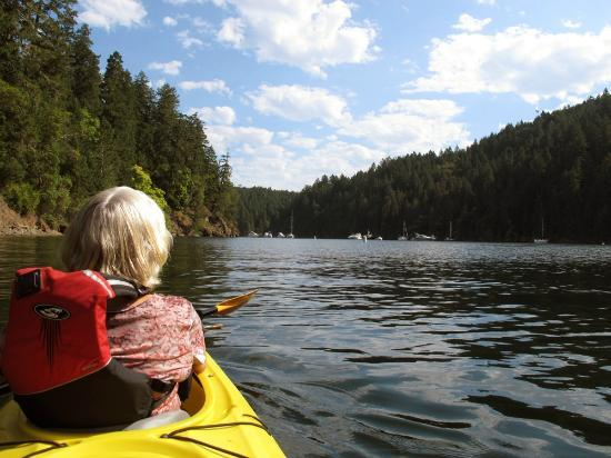 Brentwood Bay Resort & Spa: Kayaking on Brentwood Bay
