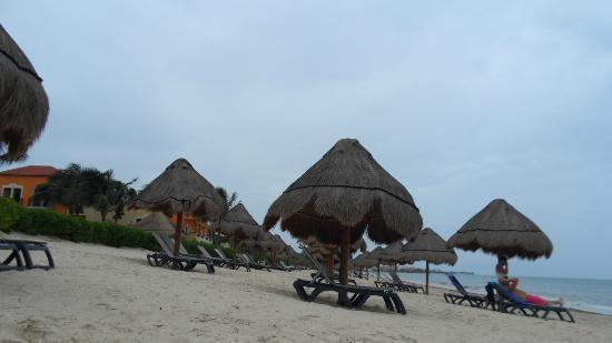 Ocean Coral & Turquesa: Relaxing