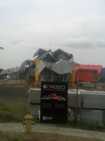 Biomuseo: Bio Museum, Underconstruction Sept 2012
